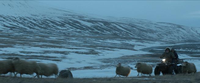 RAMS_06__Netop_Films_2015_Photo__Sturla_Brandth_Gr_vlen